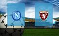 Прогноз на Наполи и Торино 29 февраля 2020